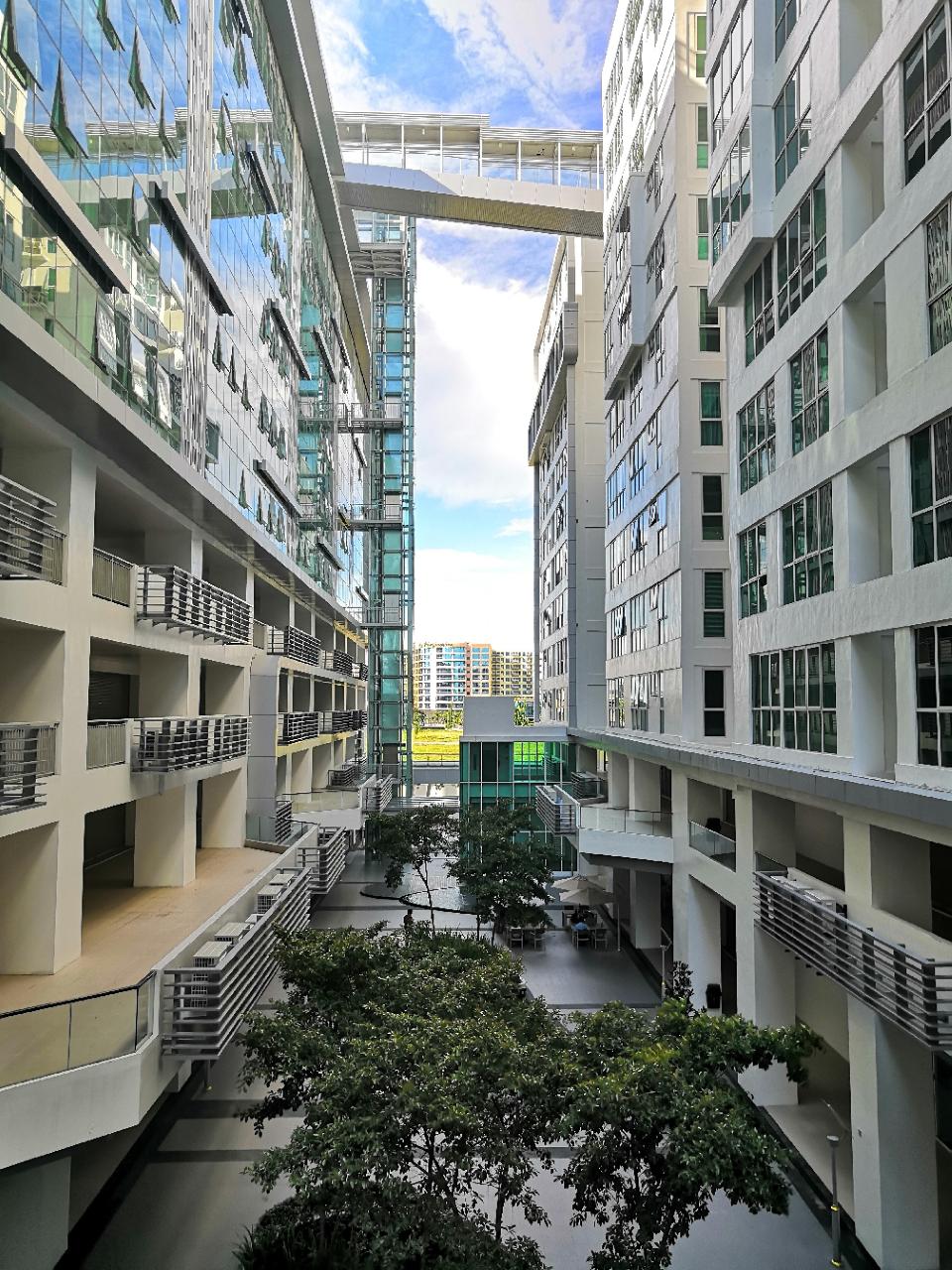 Sutera Avenue – 1st Floor